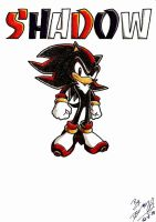 Shadow the Hedgehog by D4V1N5