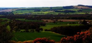 Old Winchester Hill by Meluzina81