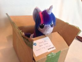 Twilight in her box by Epicrainbowcrafts