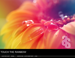 ....touch the rainbow by munecaa