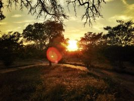 Texas Sunset by TheGerm84