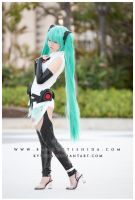Append SOFT by kyykun