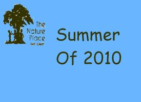 Nature Place Day Camp 2010 by SpiderMatt512