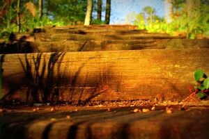 Steps by aRT-iS-eXTaSY