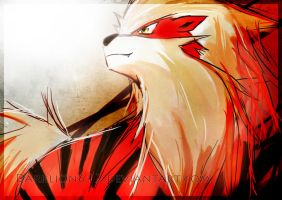 Arcanine by side34