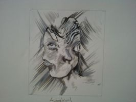 Asymmetry: Picasso anyone? by SketchedExistence