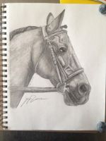 Finney by TayMay135