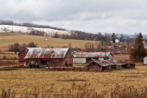 Farm by aokpsychophotography