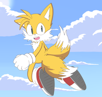 .:Flying High:. Collab by SonicWind-01