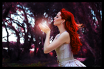 Fairy Photo Manipulation by StarlightSophie