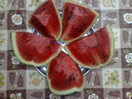 Water Melon by SameerPrehistorica