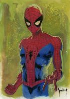 Spiderman Sketch by Dubisch