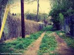 Urban Trail by Domthetacolover