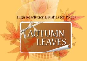 Autumn Leaves-PS Brushes by fiftyfivepixels