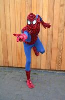Spider-Man Cosplay (3) by masimage