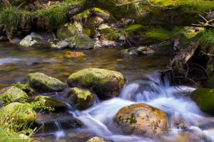 Tranquillity by G-Harte