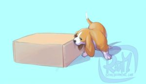 Puppy Surprise Box 1 by ritam