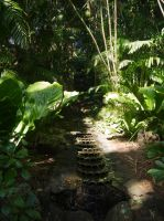 Tropical forest exotic backgrounds 26 by Libsack-Art