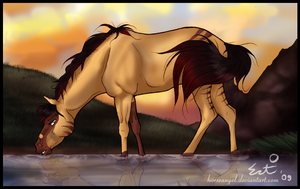 Sunset Dream - trade by green-ermine