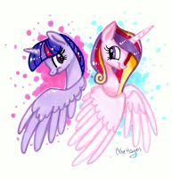 Cadance and Twilight by frostykat13