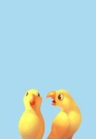 miscellaneous birds by polywomple