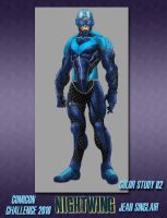 CCC2010 NIGHTWING 02 by JeanSinclairArts