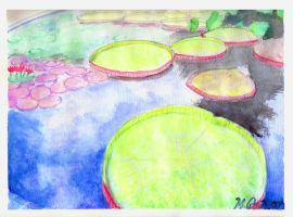 Lily Pads by Ermorden