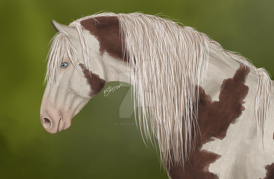 Paint horse, new stile by HalvblodArt