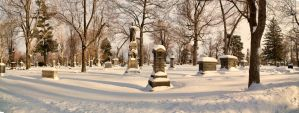 Forest Lawn Cemetery - Buffalo, NY by TomFawls