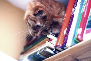 I has all your books. by Justin14100