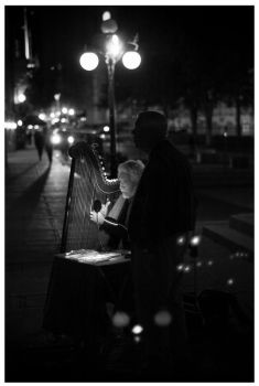 the Harpist and the listener by cameraflou