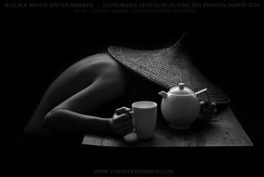 Honorable Mention In Fine Art Photography 2014 by artofdan70