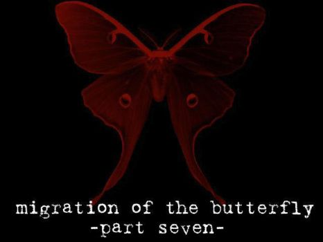 Migration of the Butterfly, 7 by suture