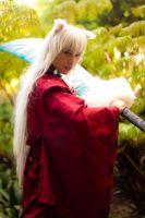 Inuyasha by BertLePhoto