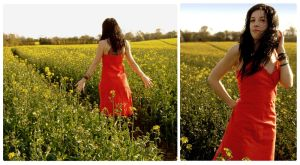 field of gold by manicfairytale