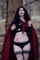 Red riding hood - the dark huntress by Cleo-Feline