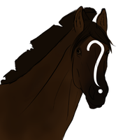 DSS Question Mark 1826 by DarkShadowStable