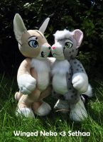 Both plushies together by Sethaa