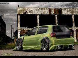 VolksWagen Polo by roobi