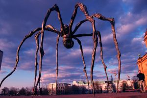 The Spider I by NiDiMe