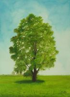 Holly Oak Watercolor Painting by aakritiarts