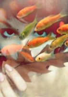 fish by jmid