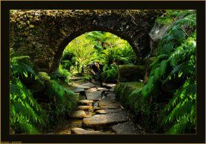 Passage into Beautiful World... by Tigles1Artistry