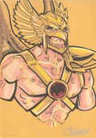 Hawkman New 52 by cmkasmar