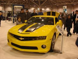 Bumblebee at the Car Show by LittleBigDave