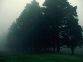 Misty early morning golf by SxyfrG