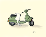 Cat on a moped by PowermadMistress