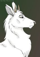 A Young White Stag by darkest-light