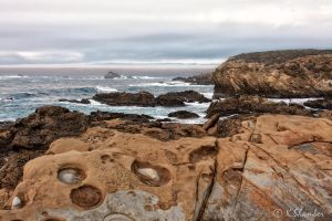 Point Lobos -4 by KBL3S