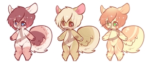 Squirrel Adopts:$3 by Rainbowstarrs